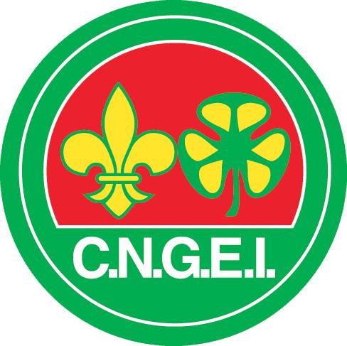 logo_cngei_DEF1